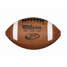 GST NCAA 1003 Official Collegiate Pattern Football by Wilson in Ames Ia