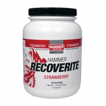 Recoverite Drink Mix - 16 Servings: Chocolate in Lisle, IL