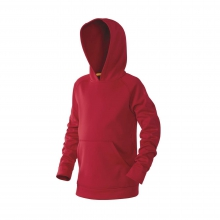 Youth Post Game Fleece Hoodie by DeMarini
