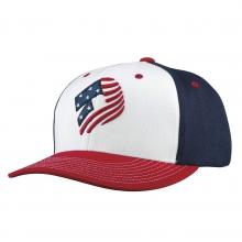 Stars and Stripes Snapback Hat by DeMarini