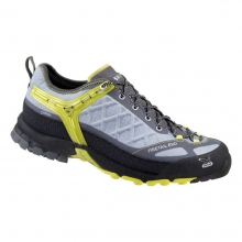 Men's MS Firetail Evo Shoe by Salewa