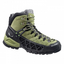 Mens Alp Flow Mid GTX