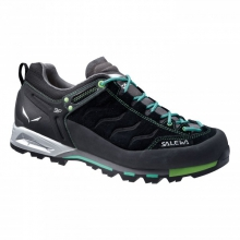 Mens Mtn Trainer GTX by Salewa