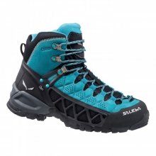 Womens Alp Flow Mid GTX in Ellicottville, NY