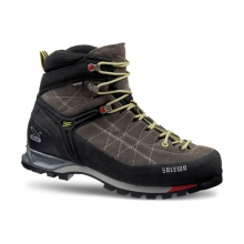 Mountain Trainer Mid GTX Men's by Salewa