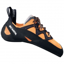Vapor Climbing Shoe by Scarpa