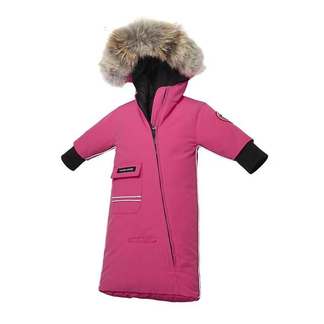 Canada Goose - Baby Snow Bunting
