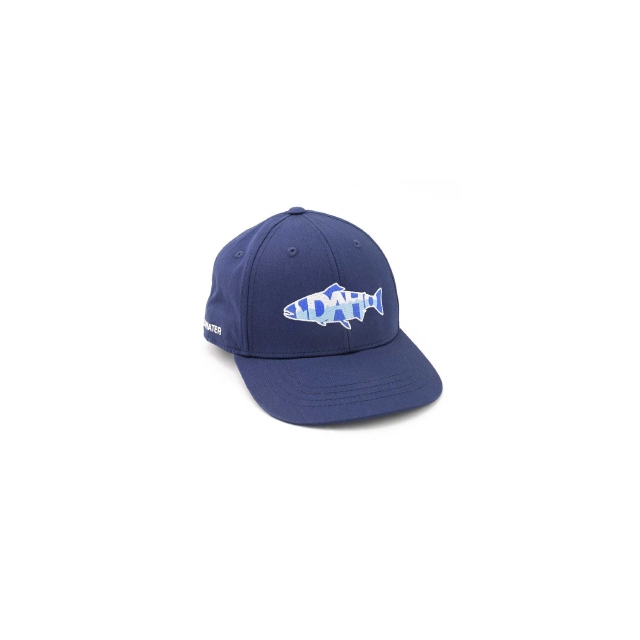 Repyourwater - Idaho Mountains Hat