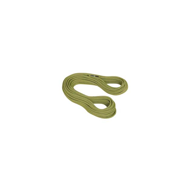 Mammut - 9.5 Infinity Classic Rope 60M - Pappel