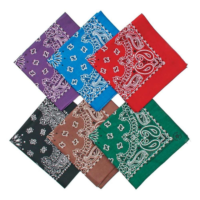 Liberty Mountain - Paisley Bandanas One Size::Assorted Colors