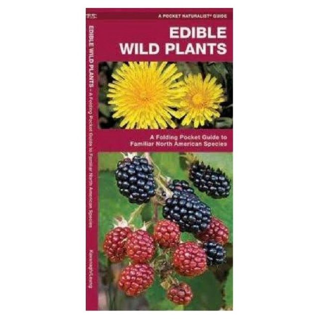 Liberty Mountain - Edible Wild Plants Pamphlet