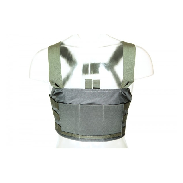 Blue Force Gear - Ten-Speed 308 Chest Rig