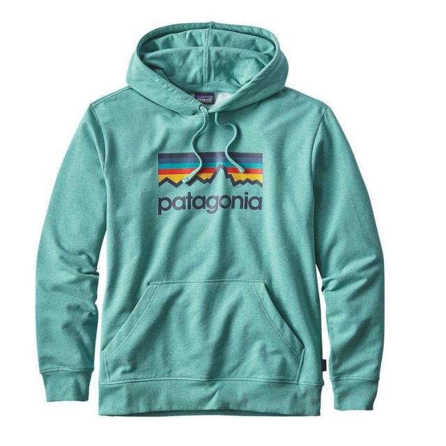 Patagonia - Men's Line Logo MW Hoody
