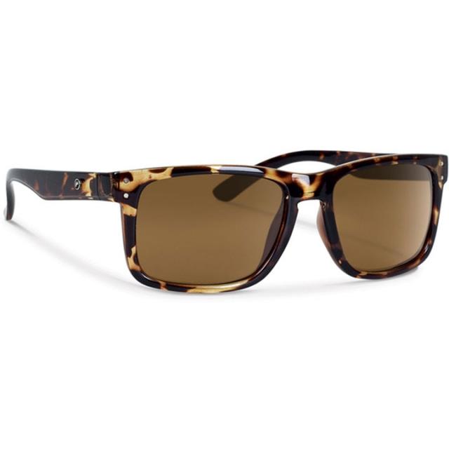 Forecast Optics - Forecast Clyde Sunglasses