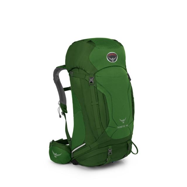 Osprey Packs - Kestrel 38