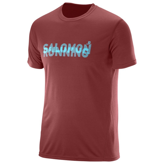 Salomon - Park Tech Ss Tee M