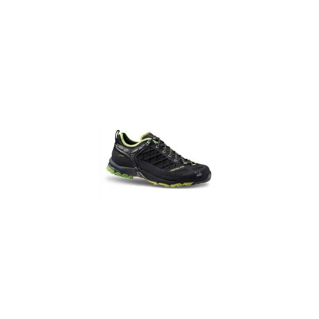 Salewa - Men's Firetail EVO GTX Shoes