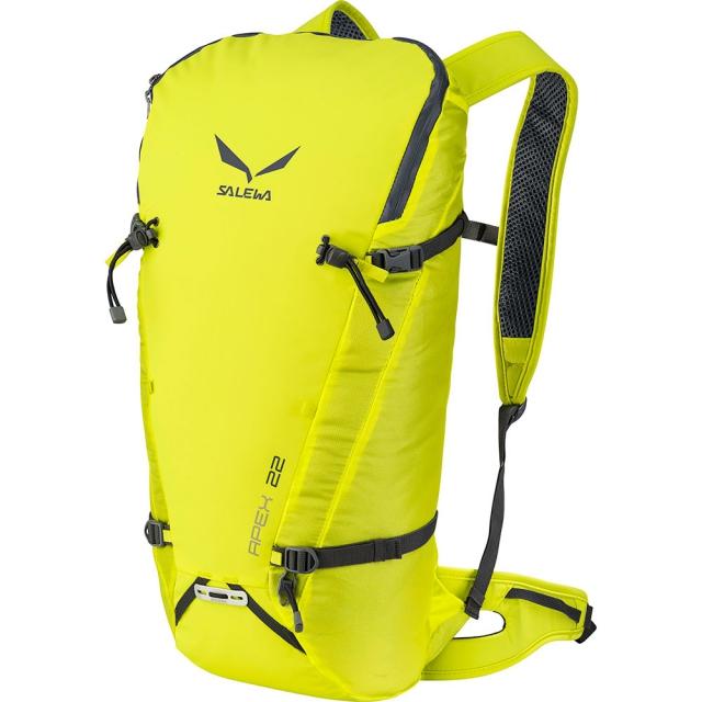 Salewa - Apex 22 Backpack - Spring