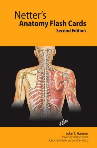 Majors Books Netters Anatomy Flash Cards