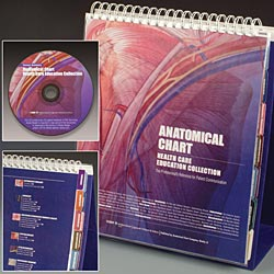 Anatomical Chart Health Care Educational Collection: The Professionals Reference for Patient Communication. 10X12 Laminated Pages Cover Image
