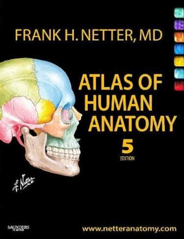 Atlas of Human Anatomy Package. Includes Textbook and Access Code for 1 Year Access to Netters 3D Interactive Anatomy Website Cover Image