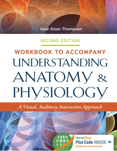 Workbook to accompany Understanding Anatomy and Physiology: A Visual, Auditory, Interactive Approach Cover Image