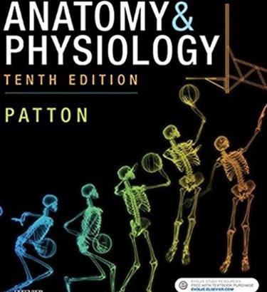 Anatomy & Physiology Cover Image