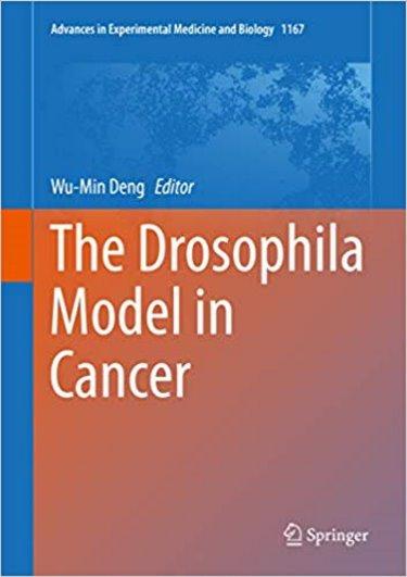 Drosophila Model in Cancer Cover Image