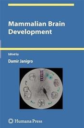 Mammalian Brain Development