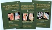 Netter Collection of Medical Illustrations: Musculoskeletal System Bundle. 3 Part Set