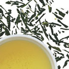 Sencha from Peet&#x27;s Coffee &amp; Tea