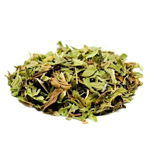 Pacific Coast Mint from World Tea House
