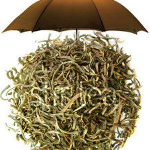 Ceylon Single Estate from Stir Tea