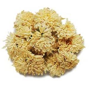 Chrysanthemum from TeaSpring