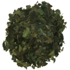 Rainforest Mint Guayusa from Runa