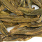 Dragonwell from Narien Teas