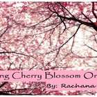 Calming Cherry Blossom Orchard from Adagio Teas