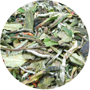 Organic Pomegranate White Tea from Tea District