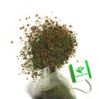 Genmaicha (Premium Tea Bag) from Maeda-en