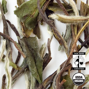 Organic Bai Mu Dan White Tea from Arbor Teas