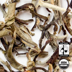Organic Makaibari Silver Tips White Tea from Arbor Teas