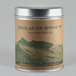 Douglas Fir Tip Tea from Juniper Ridge