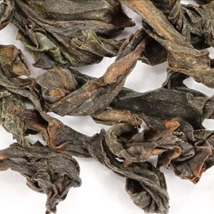 wu yi oolong from Adagio Teas