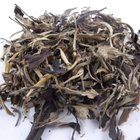 2010 Spring Old Tree White Moon Light Jinggu Tea from JK Tea Shop
