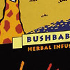 Rooibos & Honeybush Bushbabies from Intaba Teas of Africa