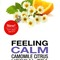 Feeling Calm - Camomile Citrus Herbal Tea from President's Choice