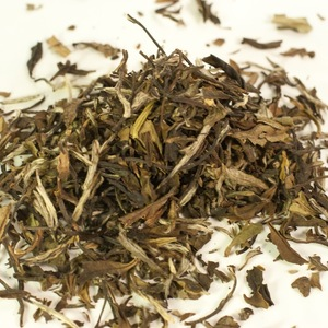 Kiwiburst from Shui Tea