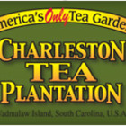 2007 First Flush from Charleston Tea Plantation