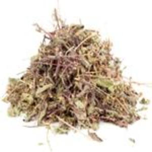 House Blend Tulsi from The Tao of Tea