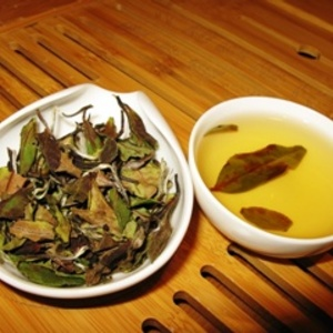 Wild White Tea from Shang Tea